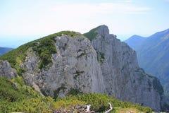 Montering Konj, Kamnik fjällängar, Slovenien Arkivfoto