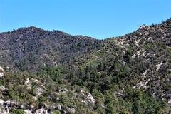 Montering Lemmon, Tucson, Arizona, Förenta staterna royaltyfria foton