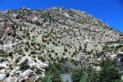 Montering Lemmon, Tucson, Arizona, Förenta staterna royaltyfri fotografi