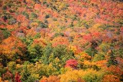 Montering Mansfield nära Stowe i Vermont Royaltyfri Bild