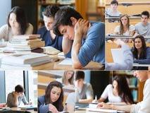 Montering met beelden van studenten Stock Afbeeldingen