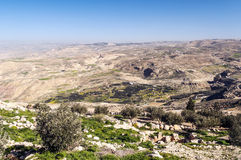 Montering Nebo i Jordanien Arkivfoton