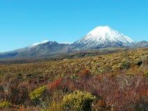 Montering Ngauruhoe och montering Tongariro, Nya Zeeland fotografering för bildbyråer
