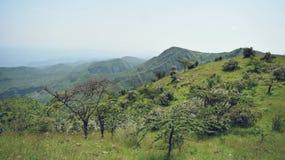 Montering Ole Sekut, södra Rift Valley Kenya Arkivfoton