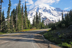 Montering Rainier National Park, Washington, USA Arkivfoton