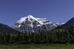 Montering Robson In The Rocky Mountains i British Columbia arkivbilder