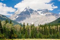 Montering Robson som står högt över vintergrön skog Arkivfoton