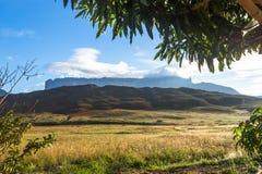 Montering Roraima Arkivfoton