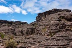 Montering Roraima Arkivbilder