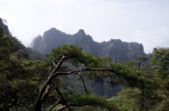 Montering Sanqing, Sanqingshan, Jiangxi Kina Royaltyfria Foton