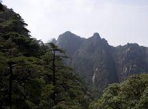 Montering Sanqing, Sanqingshan, Jiangxi Kina Royaltyfri Fotografi