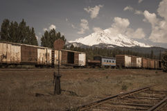 Montering Shasta Royaltyfri Bild