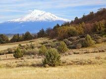 Montering Shasta Kalifornien Arkivbild