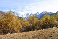 Montering Siguniang i Sichuan, Kina Arkivfoton