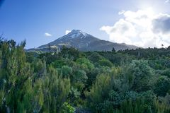 Montering Taranaki arkivbilder