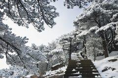 MonteringsHuangshan snö arkivbild