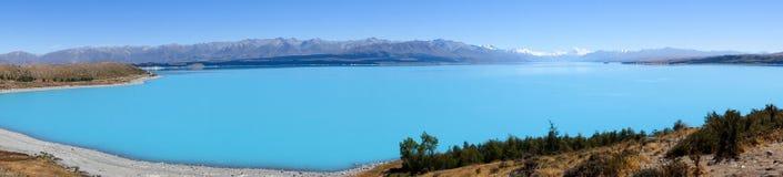 Monteringskock och Pukaki sjö, Nya Zeeland Royaltyfri Fotografi