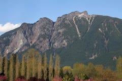 Monteringssi, Washington State Royaltyfri Fotografi