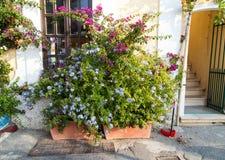 Monterosso Zdjęcia Stock