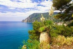 Monterosso al mare (Cinque terre) Stock Photography
