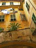 Monterosso alsto 20 Royaltyfri Bild