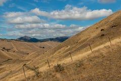 Montes áridos em Marlborough, Nova Zelândia Imagem de Stock Royalty Free