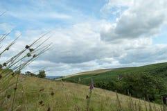 Montes acima das quedas de Bronte Imagens de Stock