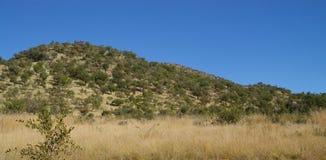 Montes africanos do parque fotografia de stock