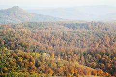 Montes cobertos com a floresta amarela imagens de stock