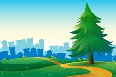 Montes com um pinheiro grande perto das construções altas Imagem de Stock