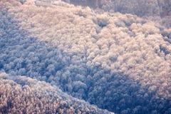 Montes congelados das montanhas Carpathian Fotografia de Stock Royalty Free