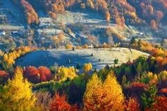 Montes da montanha cobertos com as árvores com as folhas de alaranjado, de amarelo e o escarlate das cores, e abeto sempre-verdes imagem de stock royalty free