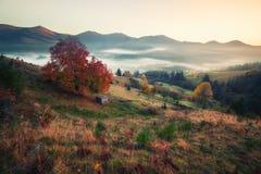 Montes da montanha na manhã enevoada do outono imagem de stock