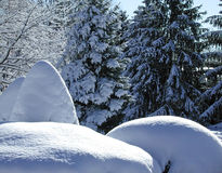 Montes da neve Fotografia de Stock