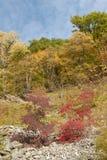 Montes de Cáucaso Fotografia de Stock