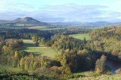 Montes de Eildon da opinião de Scotts com mistura de lã do rio Imagens de Stock Royalty Free