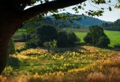 Montes de Provence foto de stock royalty free
