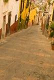 Montes de San Miguel de Allende Imagem de Stock Royalty Free