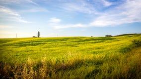 Montes de Tuscan Foto de Stock