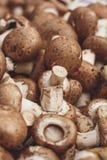 Montes do cogumelo Imagens de Stock Royalty Free