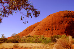 Montes do vermelho de Kata Tjuta Fotografia de Stock Royalty Free