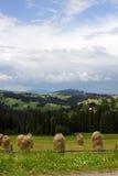 Montes do verão Imagens de Stock