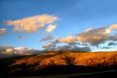 Montes dourados Foto de Stock