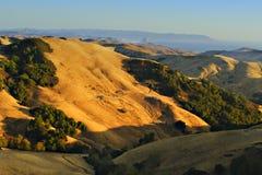 Montes dourados de Califórnia Foto de Stock Royalty Free
