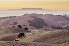 Montes dourados de Califórnia Fotografia de Stock