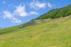 Montes e céu Fotografia de Stock