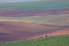 Montes e campos abstratos Foto de Stock Royalty Free