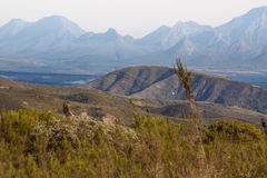 Montes e montanhas perto da baía de Mossel Fotos de Stock Royalty Free