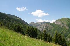 Montes e o prado Foto de Stock