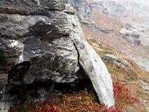 Montes e rocha Imagens de Stock